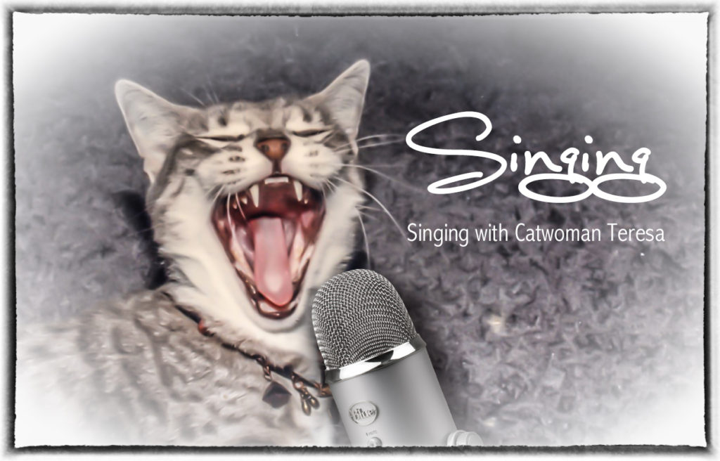 sing_cover