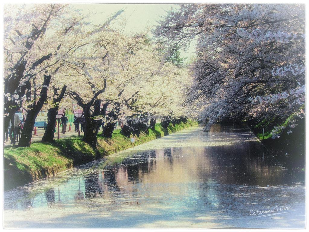 hirosaki29.jpg